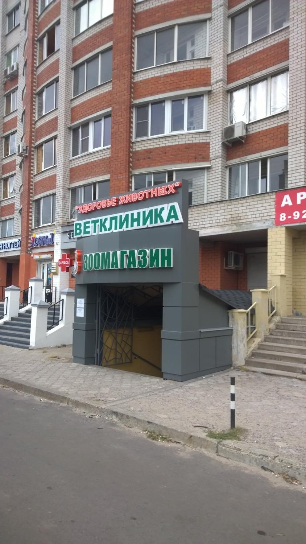 Наружная реклама ветклиники Воронеж