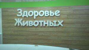 Интерьерная реклама в Воронеже